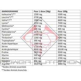 Aminogramme Caseine Addict Nutrition chocolat