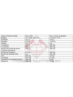 TESTEK QNT QNT  Booster de Testostérone Power Nutrition