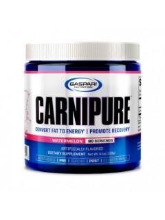 CARNIPURE GASPARI NUTRITION GASPARI NUTRITION Carnitine Power Nutrition