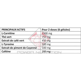 ICODRIN ICOPRO SERIES FIRST IRON SYSTEMS FIRST IRON SYSTEMS Brûleurs de graisse Power Nutrition