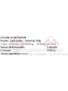 LEUCINE INSTANT GO NUTRITION GO NUTRITION Acides Aminés Power Nutrition