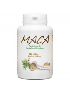 EXTRAIT DE MACA BIO GPH GPH  Nutrition Sportive Power Nutrition
