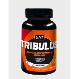TRIBULUS QNT QNT  Booster de Testostérone Power Nutrition