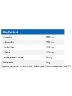 BCAA POWER PUNCH USN 400g USN NUTRITION BCAA  Power Nutrition
