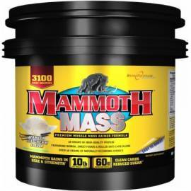 MAMMOTH MASS 4,5KG INTERACTIVE NUTRITION Gainers Power Nutrition