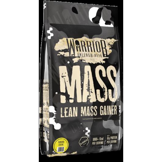 mass warrior