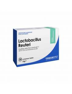lactobacillus-yamamoto