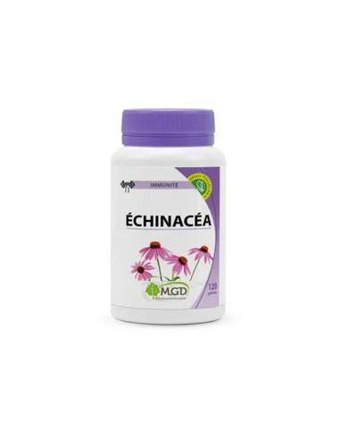 echinacea-mgd