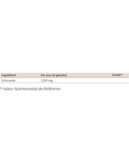 echinacea-mgd-composition